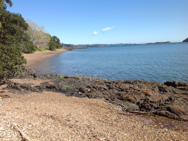 Kawakawa Bay. Not far from Auckland, where Dr, David Scott grew up